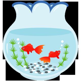 金魚鉢.png